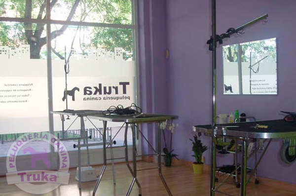 peluquería canina Alcorcón Madrid